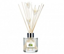 Difuzor cu uleiuri esentiale si betisoare Elegance Mint and Eucalyptus 100 ml