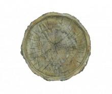 Platou decorativ Wood