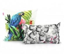 Set 2 fete de perna Blue Macaw Duo Contrast